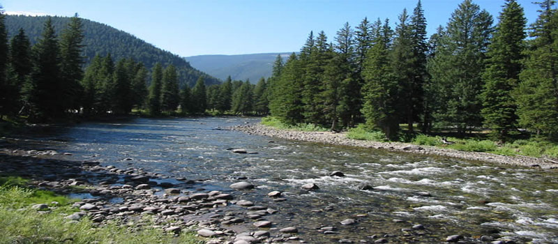 Fly Fishing on the Gallatin River in Big Sky, Montana